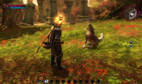 Kingdoms of Amalur: Reckoning screenshot 5